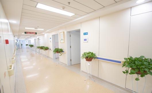 走廊扶手安装效果